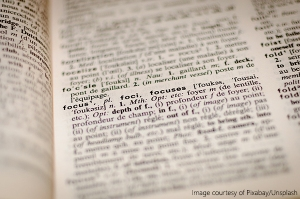 focus dictionary writing